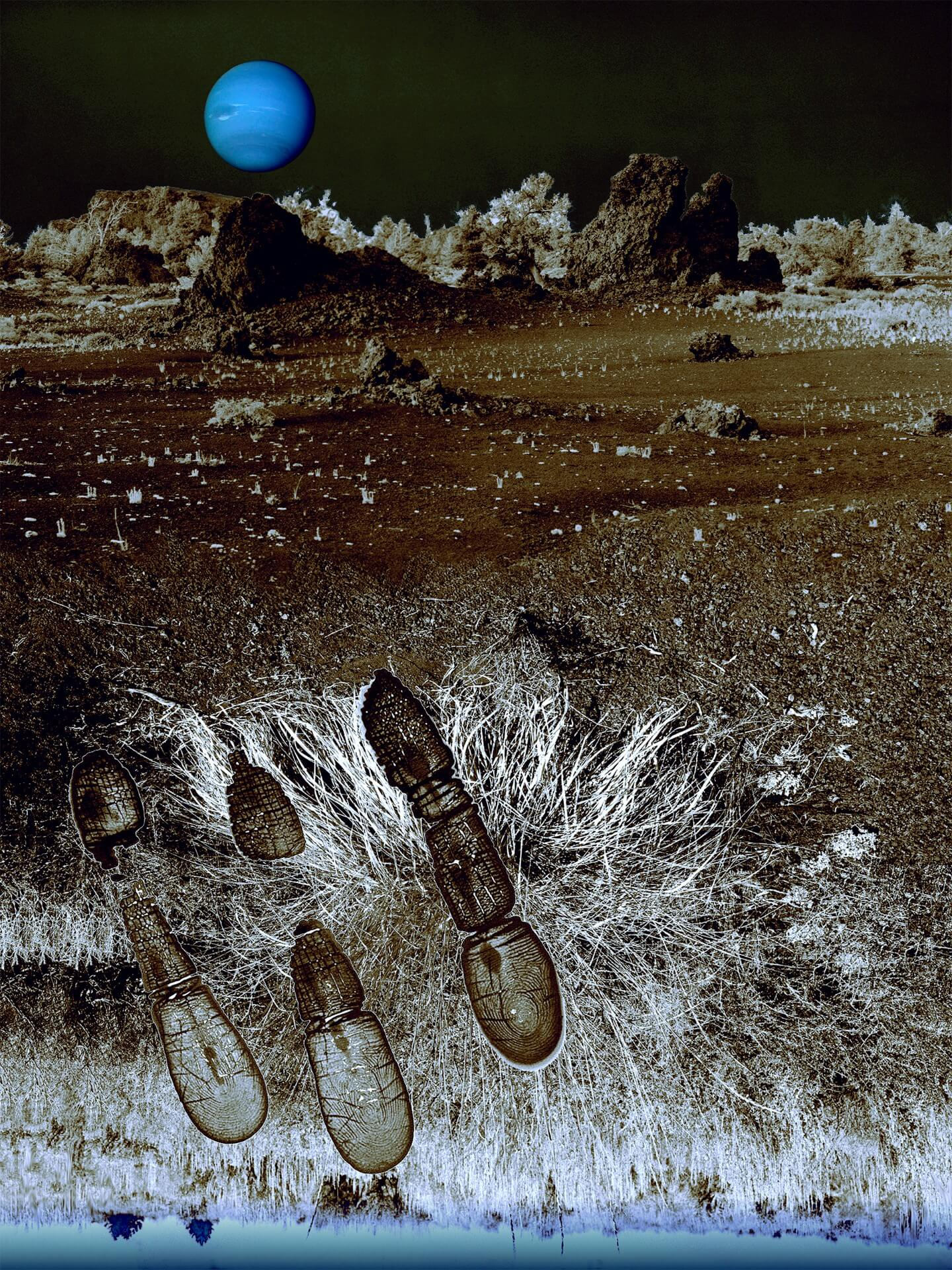 """1998, Bartoszko Leokadia """"Neptun"""""""